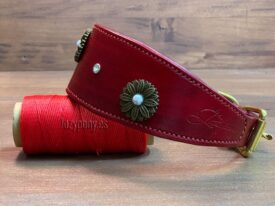 Red hound collar with conchos