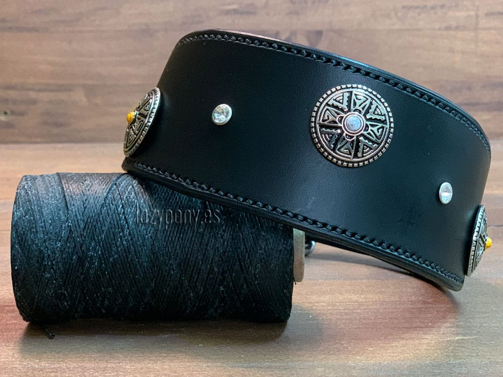 Black hound collar with conchos