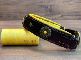 Brown Martingale Collar with conchos