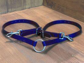 Blue dog lead coupler
