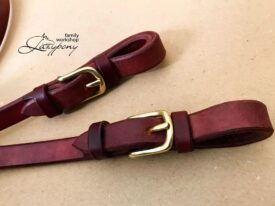 leather rains for bridle