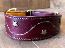 Decorated martingale hound dog collar