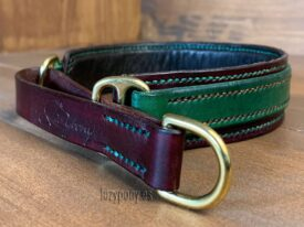 collar foxhound